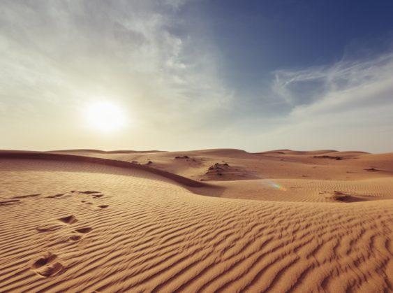 Desert landscape with sun near horizon